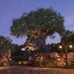 Let's explore Disney's Animal Kingdom